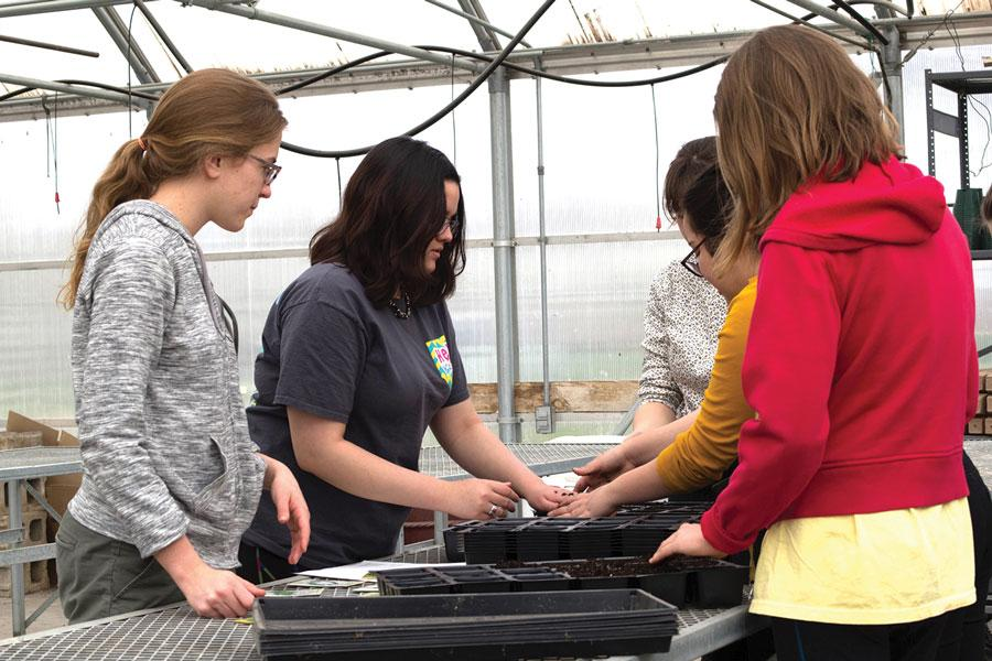 Planting in the greenhouse, members of Environmental Club, senior Christina Craig, junior Nyla Chaudhry and sophomore Carly Oliver, start lettuce, broccoli and kale seeds for Liberty Memorial Central Middle School's garden.