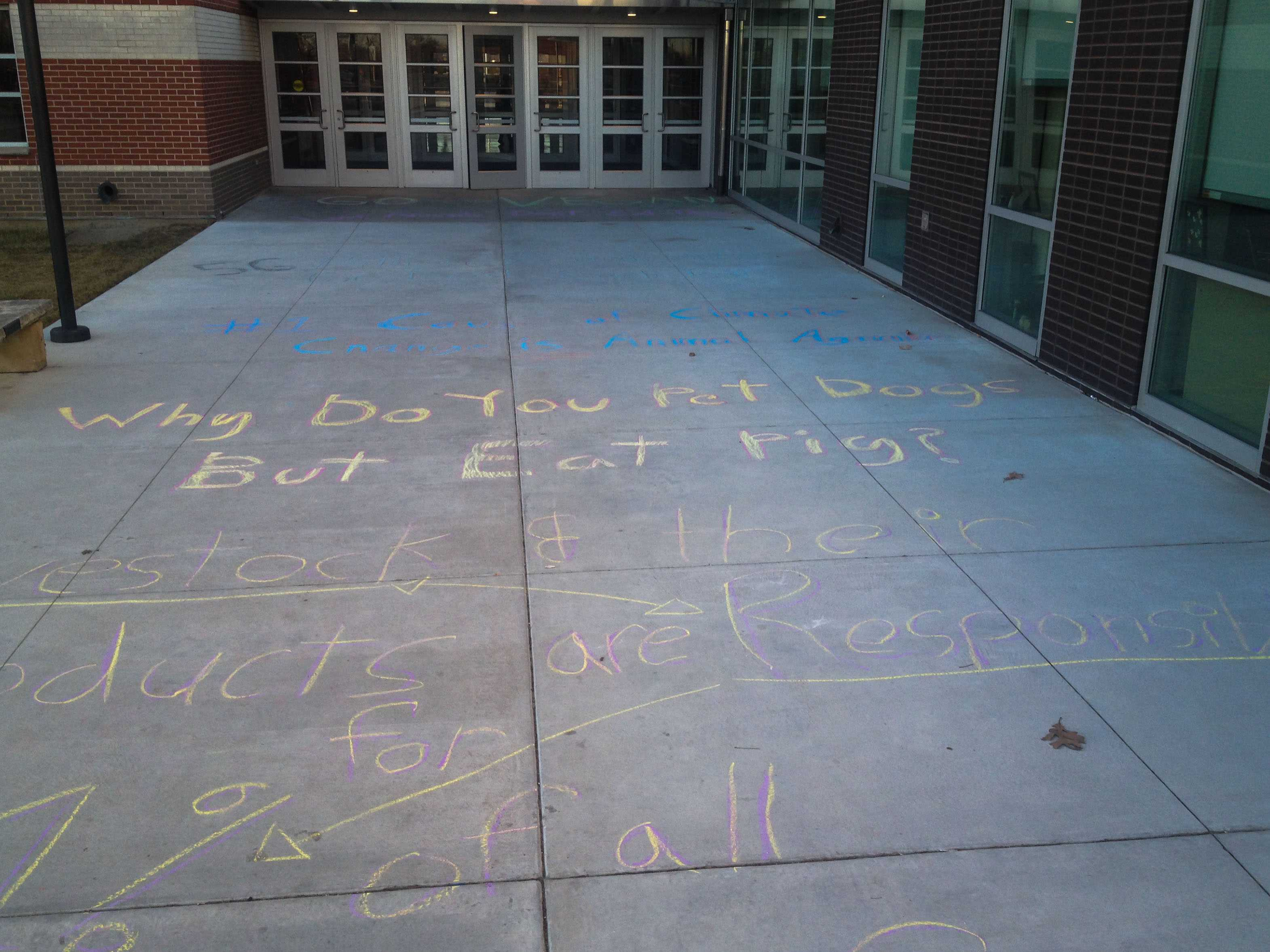 Walking into school, students and staff of FSHS observed the vegan propaganda written in sidewalk chalk. This was written by a group of vegan activists in the building. As well as the sidewalk chalk, they put up various flyers with facts about veganism and animal rights around the building.