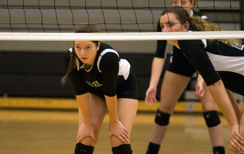 Varsity volleyball competes at state