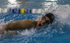Swimmers win senior night