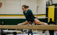 Photo Gallery: Gymnastics